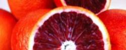 Insalata di Arance Rosse (Blood oranges salad)