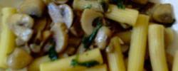 Rigatoni ai funghi ( pasta with mashrooms )